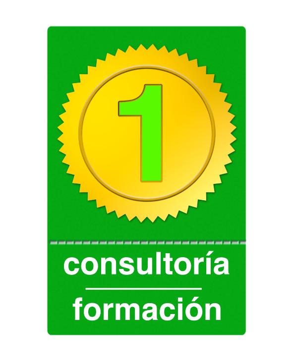 1 hora de consultoría / formación / desarrollo Xojo