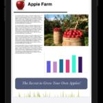 Xojo 2021r2: Novedades en PDFDocument